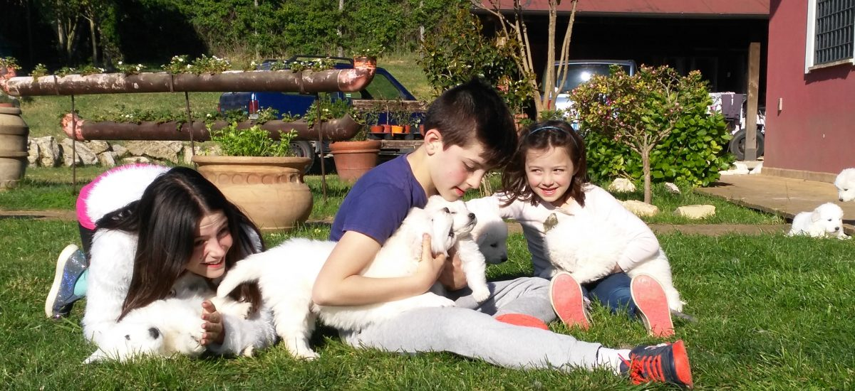 home cani e bambini buonissima
